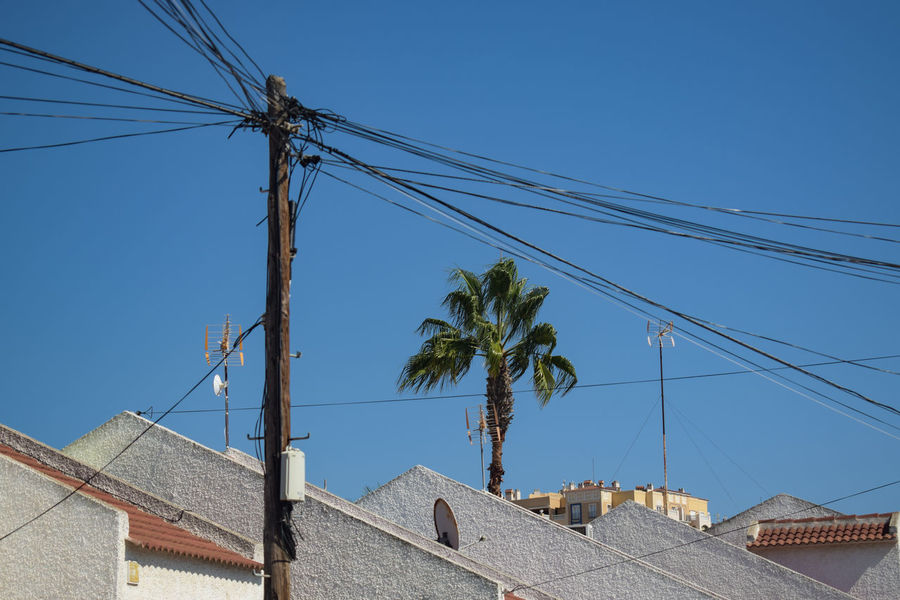 wires and a palm tree palm tree palmetto roof townscape spain mediterranean  city tree electricity pylon