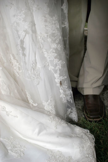 Close-Up Low Section Of Newly Wed