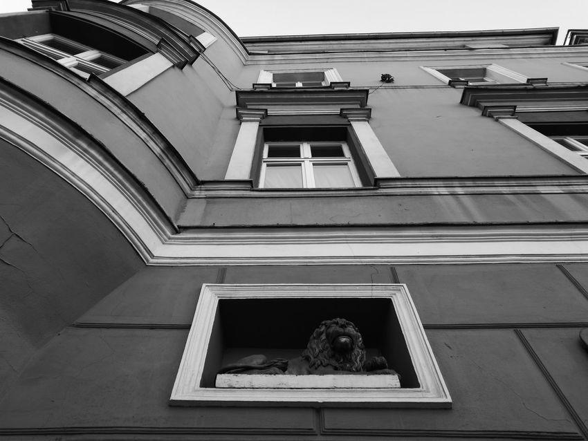 My Poland in black&white PhonePhotography Opole Black & White Poland NoEdits