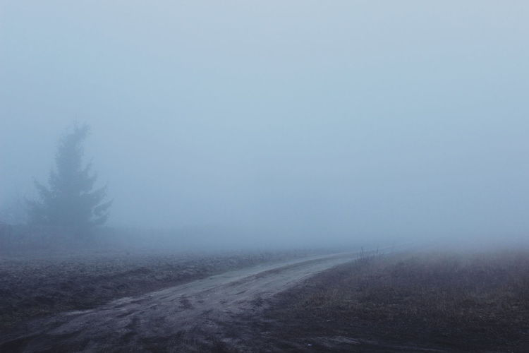 Scenic view of landscape during foggy weather