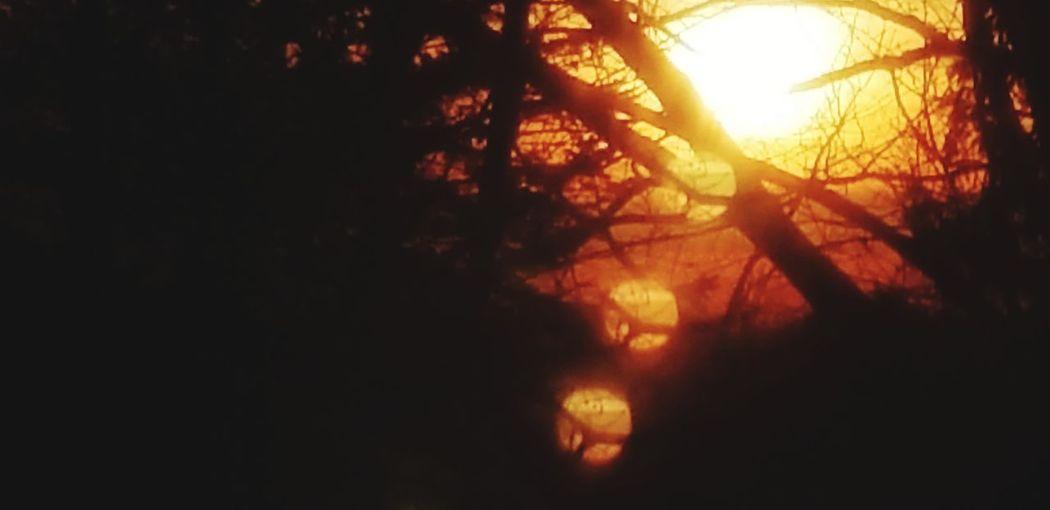 Sun in the
