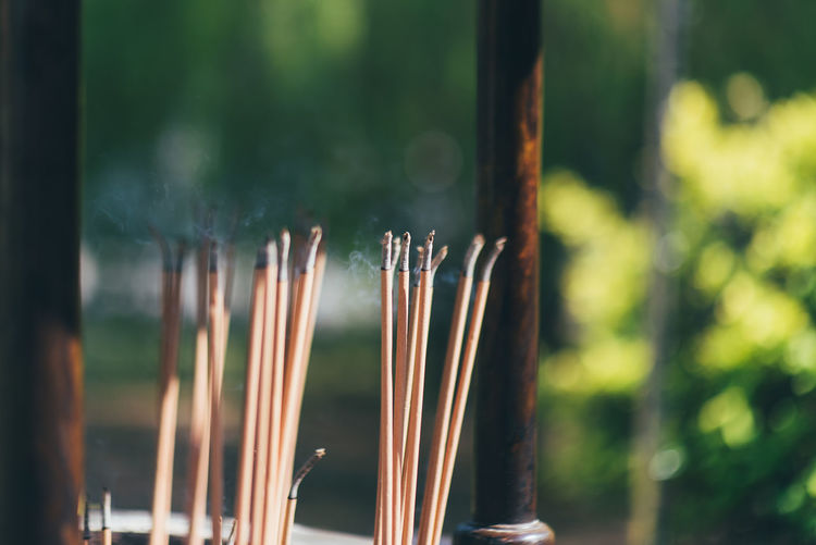 Chinese Incense Focus On Foreground Incense Belief Religion No People Day Close-up Nature Spirituality Selective Focus Place Of Worship Outdoors Smoke - Physical Structure Plant Growth Burning Tree Green Color Scented Bamboo - Plant Chinese Incense Chinese Temple Protection Pray