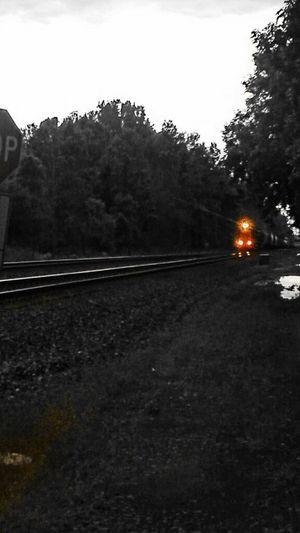 Black And White Street Photography Train NEM Black&white