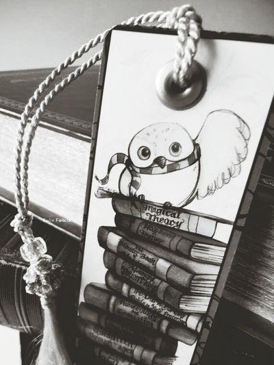 Harry Potter Owl Books