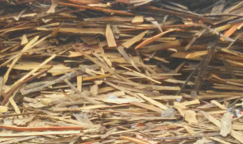 Pieces Of Wood Waste Management Waste Material Waste Wood Wood - Material Wood Peaces Wood Pieces WoodLand OM