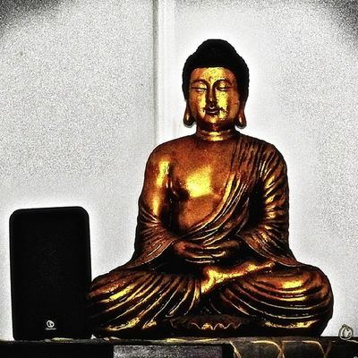 """The Buddha of Suburbia"" February 2014 ☮"