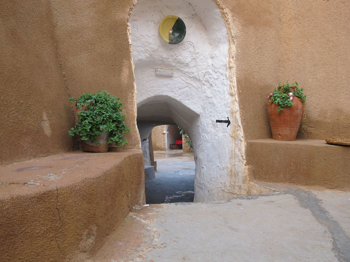 Tunisia Traditional houses, holidays Architecture Built Structure Potted Plant No People Plant Wall - Building Feature Day Arch Nature Building Exterior Outdoors Building Growth Wall Entrance Sunlight Absence Old Footpath Courtyard