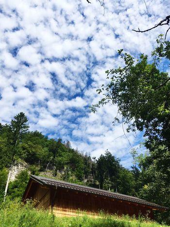 Cloud - Sky Nature