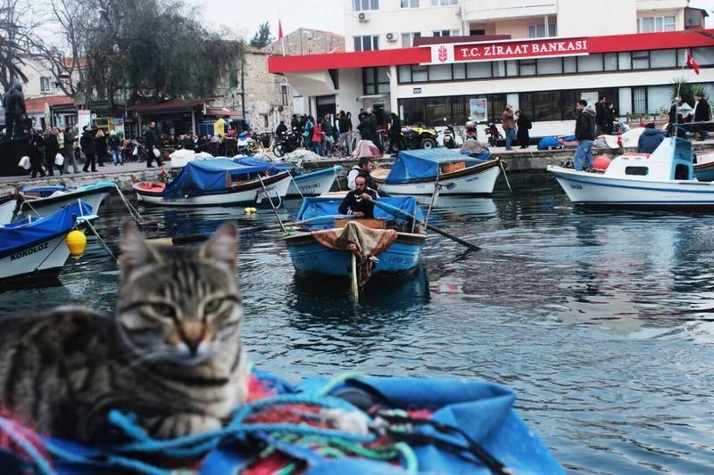 Fokai Ship Izmirlife Turkey Izmir Sea Weekend Titanic Traveling LG G3 Unfiltered