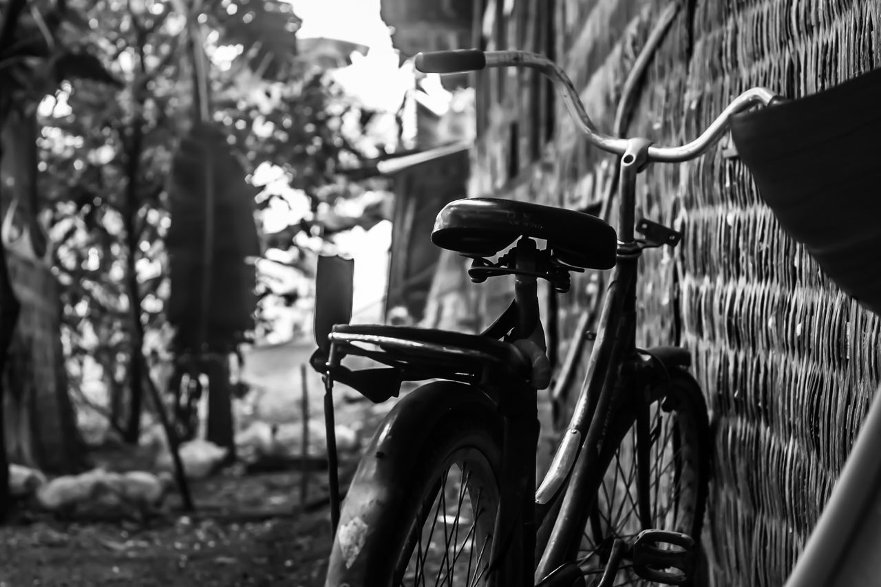 Bicycle Parked Against Blurred Background