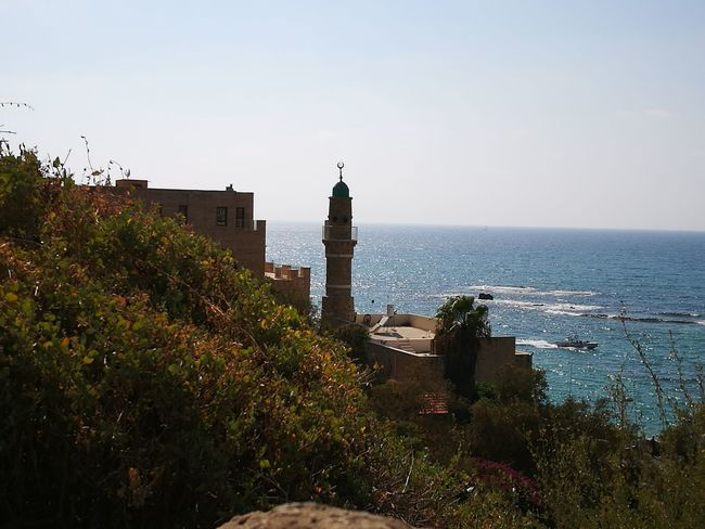 Travel Destinations City Tower History Water Sky Day HuaweiP9plus Huawei P9 Leica Old Town Jaffa Israel TelAviv City Israel Butiful♥ Sea Tree Architecture Politics And Government No People Arrival Outdoors Clock Tower Nature Clock Cultures Miles Away Lost In The Landscape
