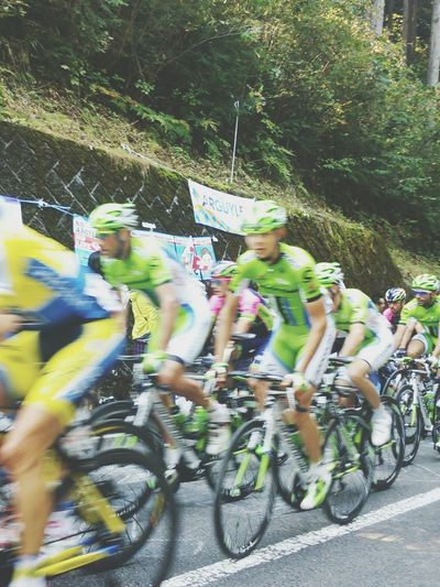 Japancup2014 Roadrace