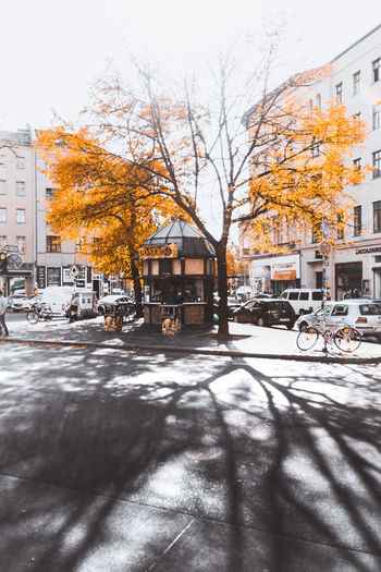 Autumn Herbst Architecture Autumn Bare Tree Building Building Exterior Built Structure Car Change City Day Mode Of Transportation Motor Vehicle Nature No People Outdoors Plant Sky Street Transportation Tree Winter