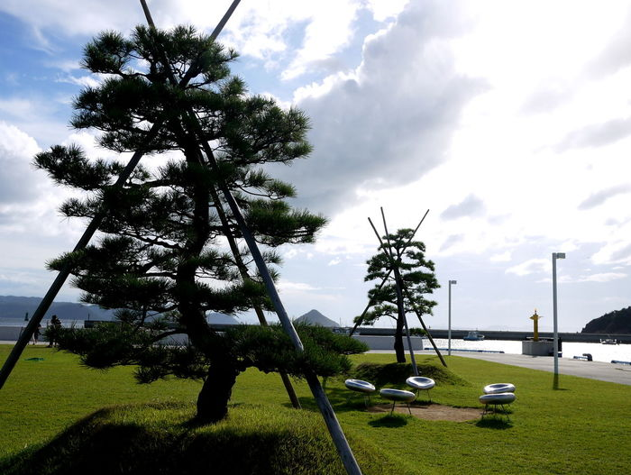 Cloud Cloud - Sky Grass Green Color Naoshima Port No People Pine Trees Support Beams Tranquil Scene Tranquility View