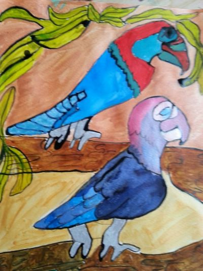 Getting Inspired Eyemcreation Eyencreative Couleurs Encreaquarelle Multicolor Perroquet Oiseaux Birds