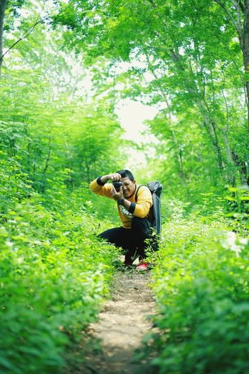 nature forest INDONESIA #jawatengah Visitindonesia Indonesiabagus Java Central Java Nature Forest Green Forest Summer Exploratorium Tree Forest Rural Scene Full Length Grass Green Color