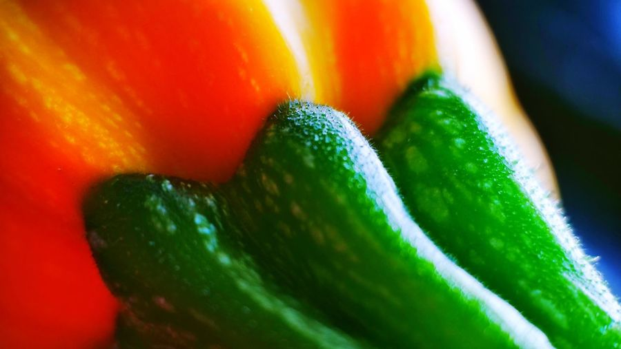 Zucchini Macro Macro Beauty Macro Photography Zucchetti Zucchini Vegetarian Food Vegetarian Food Vegetable Green Color Close-up Food And Drink Food Freshness No People Wellbeing Vegetable Healthy Eating Still Life Indoors  Multi Colored Red Pepper Cucumber Organic Full Frame Orange Color Fruit