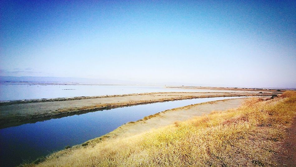 Taking Photos Hello World PicturePerfect Theworldisyours Beautiful Nature Coyote Hills Mountains And Sky Hiking Trail Hiking Blue Sky San Francisco Bay Bay Area Baylife Enjoying Life Check This Out Don Edwards