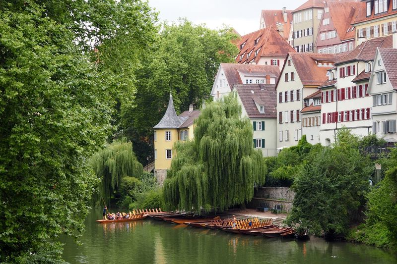 Gets me every time! Architecture Boat Building Exterior Canal Green Color Historical Sights Hölderlinturm Lush Foliage Neckar Old Buildings Old Germany People Photography Poet Reflection Residential Building River Front Stocherkahn Tourism Tree Tübingen Water Waterfront
