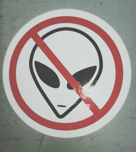 Alien Ovni ? Extraterrestre Ilegal  Paul Alien Invasion
