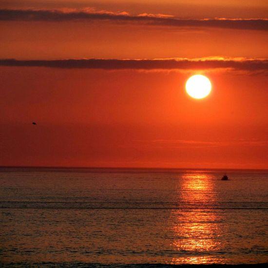 Sea Sunset Watching The Sea