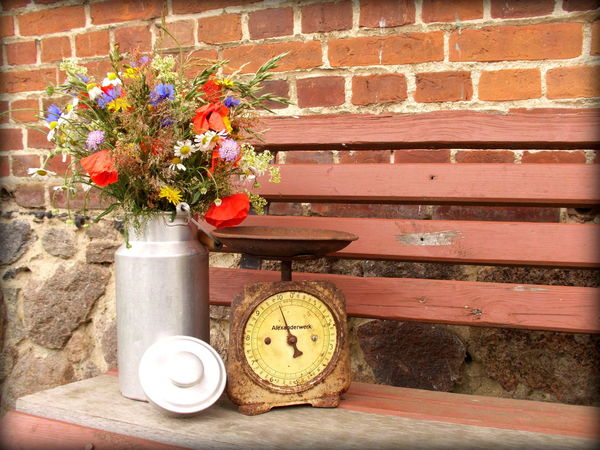 Antique Basket Brick Wall Close-up Country Life Day Decoration Flower Flower Pot Fragility Growth Kitchen Scale Milk Churn Nature No People Old Outdoors Plant Red Still Life Vintage Wood - Material