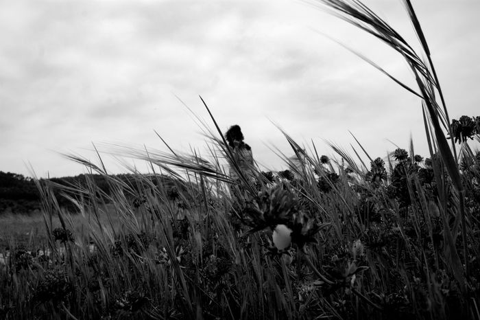 Wife Asturias Black & White Dark Melancholic Landscapes Beauty In Nature Black And White Blackandwhite Growth One Person Outdoors People Plant Sad Sadness