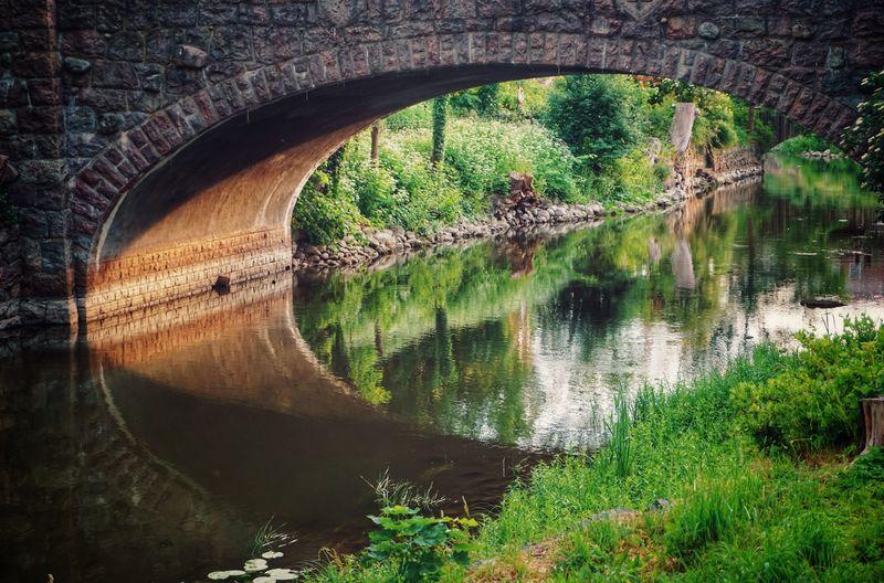 2019 Niklas Storm Juni Water Tree Reflection Architecture Arch Bridge Bridge - Man Made Structure Standing Water Arch River Riverbank Underneath Canal Bridge My Best Photo The Architect - 2019 EyeEm Awards