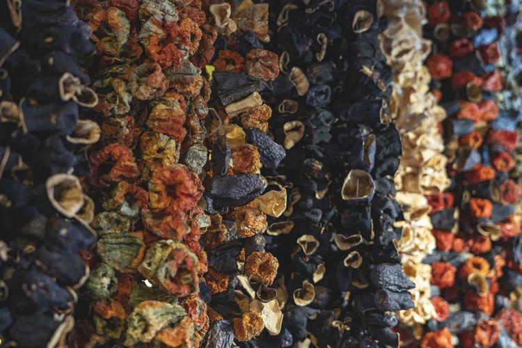 Dried vegetables hanging vertical in istanbul s egyptian  spice bazaar