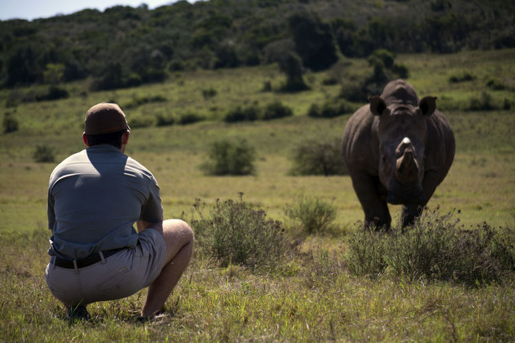 Game ranger, Ryan Fuller stands face to face with Southern White Rhino, 'Clyde'. Ryan was part of a heroic team, who rescued and rehabilitated Clyde after a horrific poaching attack. Nature Nature Photography Beauty In Nature Day Field Full Length Grass Leisure Activity Lifestyles Mammal Men Nature Nature_collection Naturephotography One Person Outdoors People People Photography Real People Rear View Rhino Rhinoceros Safari Sitting Tree