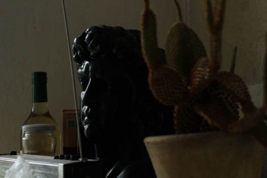 Rome Statue Atmospheric Cactus Geometry Indoors  Lines And Shapes No People