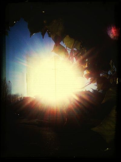 Sunny-monday-morning