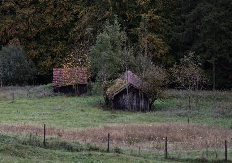 Built structure on field by trees and house