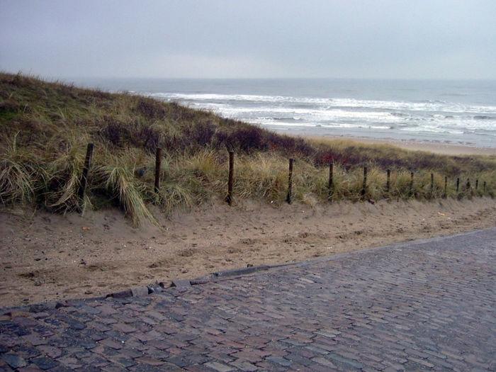 Sea Water Dune
