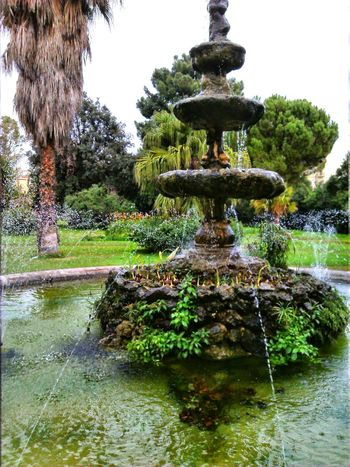 Beauty In Nature Drinking Fountain Fountain Green Color Nature No People Outdoors Tree Villamalfitano Water