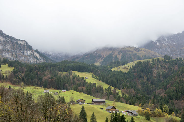 Autumn View Countryside Day Engelberg Forest House Landscape Mountain Nature No People Outdoors Scenics Swiss Alps Swiss Mountains Switzerland Tree Village