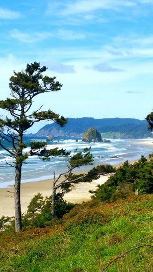 Oregon Coast Canon Beach Haystack Rock