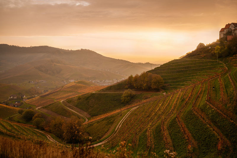 Scenic view of agricultural landscape against sky during golden sunset in mountains