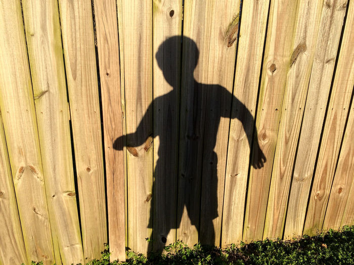 our lives are moving shadows that we wonder at until the sun sets. Black Boy Brown Day Ephemeral Fence Fencing Moment Movement Outdoors Pattern Plank Shadow Shadows Silhouette Standing Sunlight Tan Wood Wood Wooden Live For The Story