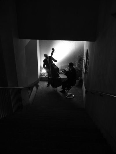 Duet On The Stairs too. Trumpet Double Bass Jazz Musicians Musicians