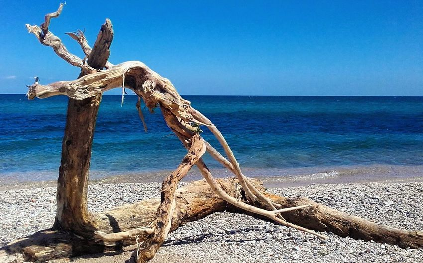 First Eyeem Photo Sculptures By The Sea Love Blue Mediterranean Sea Summer Blue Sea Showcase July Magic Nature Moments Of Color Beauty In Nature Summertime Nature_collection Sea_collection Sea Life