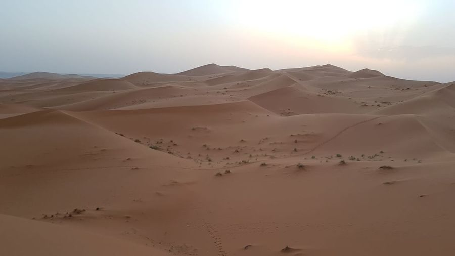 Sahara Marroquí. Sand Dune Clear Sky Mountain Desert Arid Climate Sunset Adventure Sand Road Trip