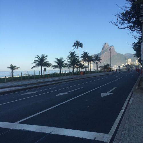 Morning walk Road Marking Road Palm Tree Tree Day Blue Outdoors Sky City Nature Ipanema Live For The Story Live For The Story The Great Outdoors - 2017 EyeEm Awards This Is Latin America