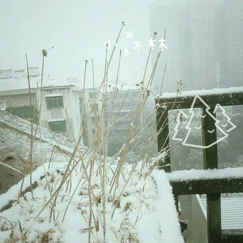 Snow ❄ Bye Bye Winter First Eyeem Photo