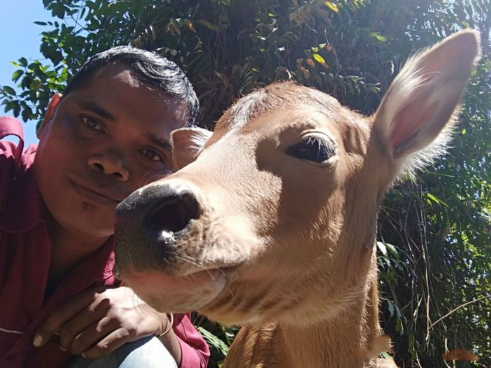 Great photo with bali calves People EyeEm Nature Lover The Street Photographer - 2018 EyeEm Awards Nature EyeEmNewHere Outdoor Landscape Balinese Calves Pets Protruding Portrait Headshot Close-up
