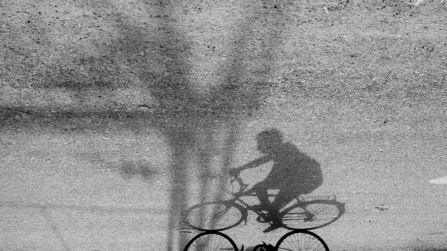 Low Section Human Leg Real People Human Body Part People High Angle View EyeEm Selects EyeEmNewHere Minimalpeople Minimalist Photography  Minimalist Photography  Phoneonly PhonePhotography One Man Only Minimalist Photography  Minimalism_masters Shadows & Lights Shadow Commuter Commuter Life Cycle Cyclephotography Natgeotravellerindia Magnumphotos Streetphoto_bw Mobility In Mega Cities