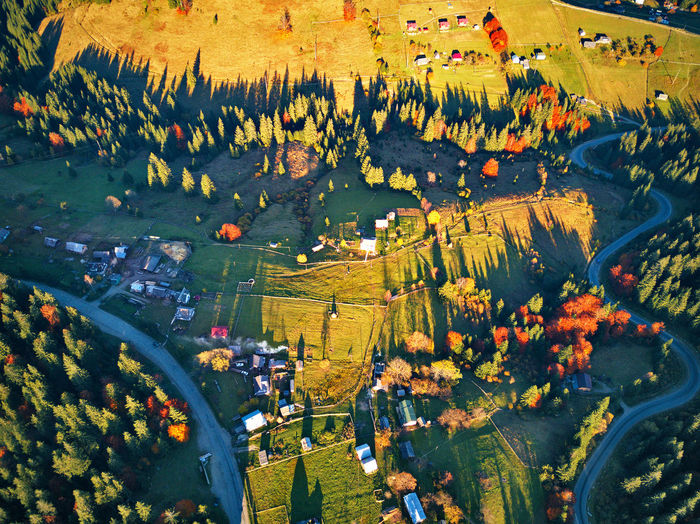 High Angle View Day Nature Plant Building Outdoors Beauty In Nature Travel Destinations Village Forest Wood Road Serpentine Curve Autumn Meadow Field Mountain Garden Fall Pass Through Carpathians Hills Aerial View