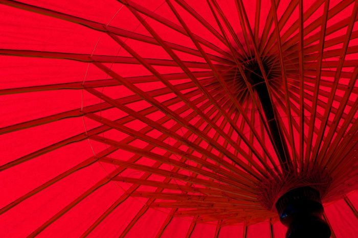 Umbrella Abstract Architecture Arts Culture And Entertainment Built Structure Ceiling Colorful Design Elégance Full Length Geiko Glowing Holding Low Angle View Maiko Maikosan Multi Colored Pattern Protection Rain Rear View Umbrella Walking Women