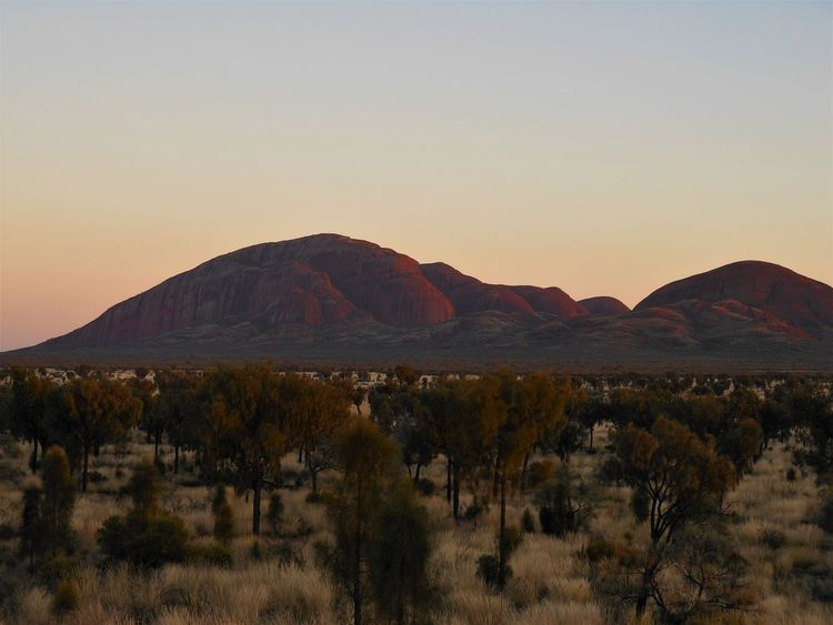 Sunrise at Kata Tjuta, Australian Outback Adventure Australia Beauty In Nature Bush Day Desert Dry Hiking Kata Tjuta Landscape Mountain Nature Nature Reserve Outback Outdoors Plant Rocks Safari Scenics Sky Sunrise Travel Destinations Tree Veld Wideness