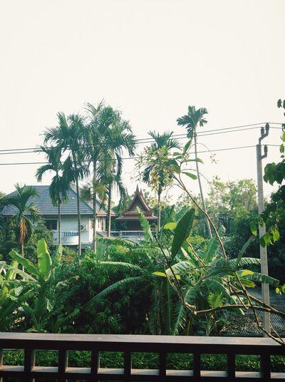 ใจกลางเมือง l center in bangkok